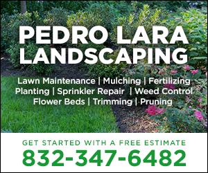 Pedro Lara Landscaping Ad